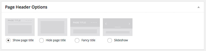 Fig. 1.1. Page header options.