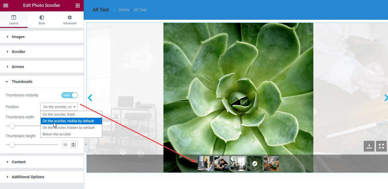 Fig. 2.2. Thumbnails settings.