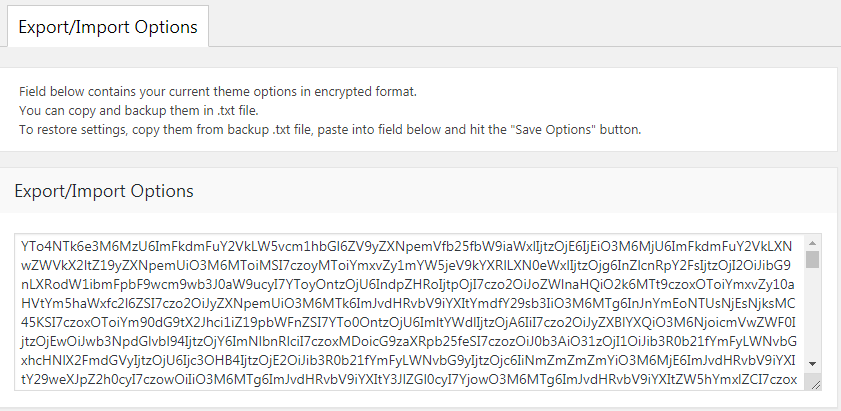 Fig. 1. Theme settings export/import interface.
