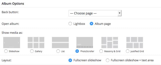 Fig. 2. Album options.