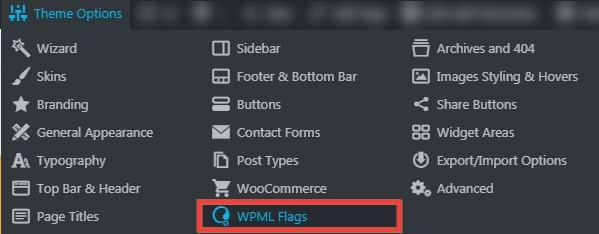 Fig. 1.1. WPML Flags settings.
